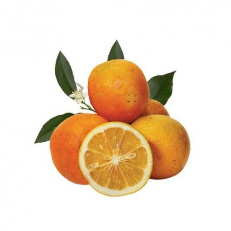 جی شاپ - نارنج