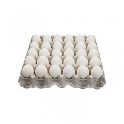 شانه تخم مرغ کیلویی