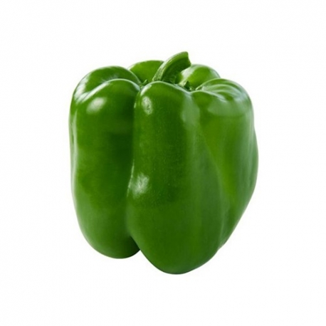 جی شاپ - فلفل دلمه سبز