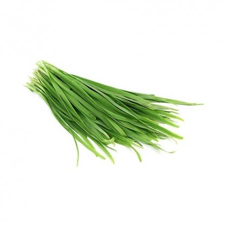 سبزی قلیه آماده طبخ یک کیلویی | جی شاپ