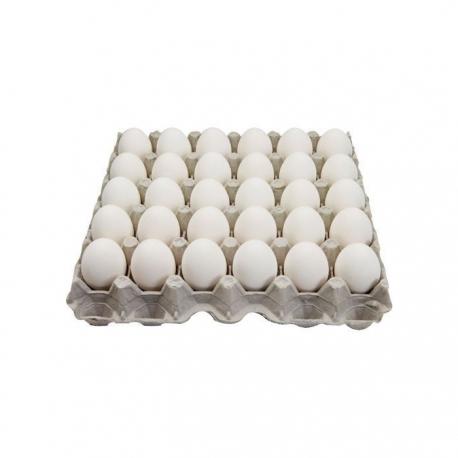شانه تخم مرغ کیلویی | جی شاپ