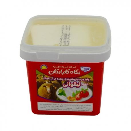 پنیر لیقوانی پگاه 400 گرمی پاستوریزه رسیده در آب نمک | جی شاپ