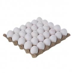 شانه تخم مرغ دو زرده 30 عددی